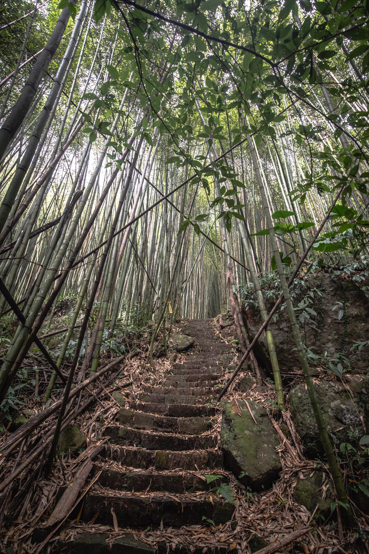 The Fenrui Trail