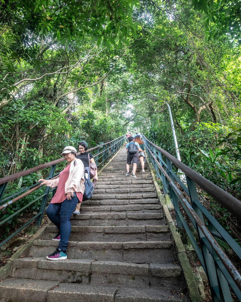 Elephant Mountain Steps - Taipei