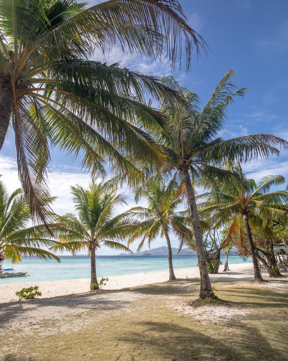 The views from Malcapuya Island, Coron