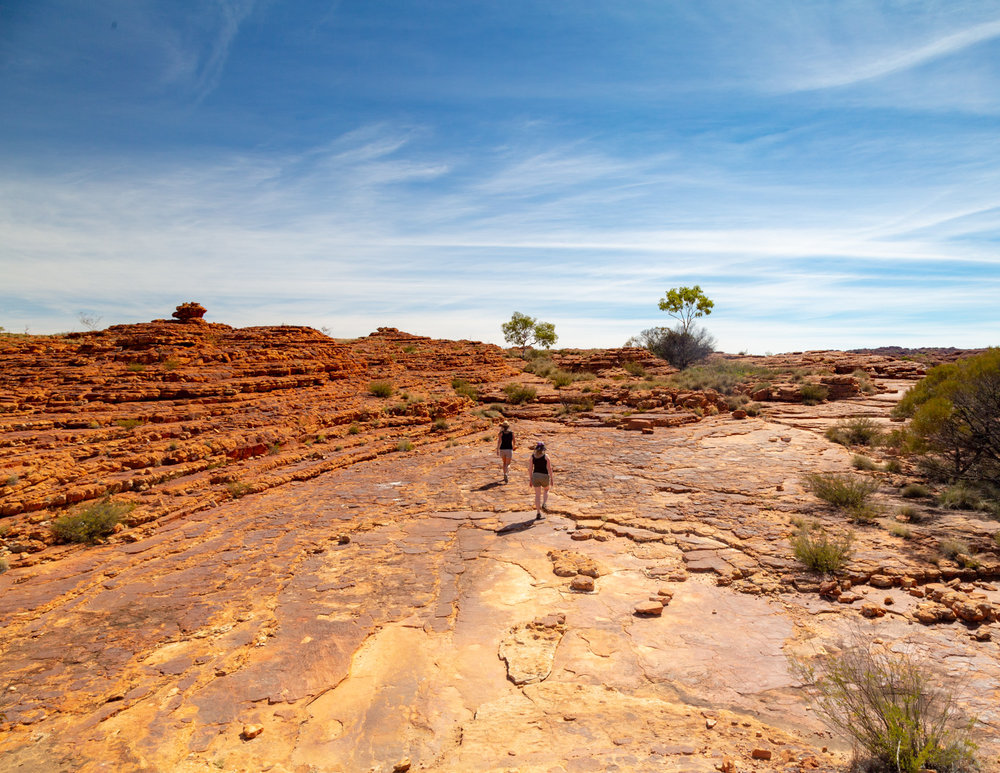 The top of the Kings Canyon Rim Walk - Central Australia