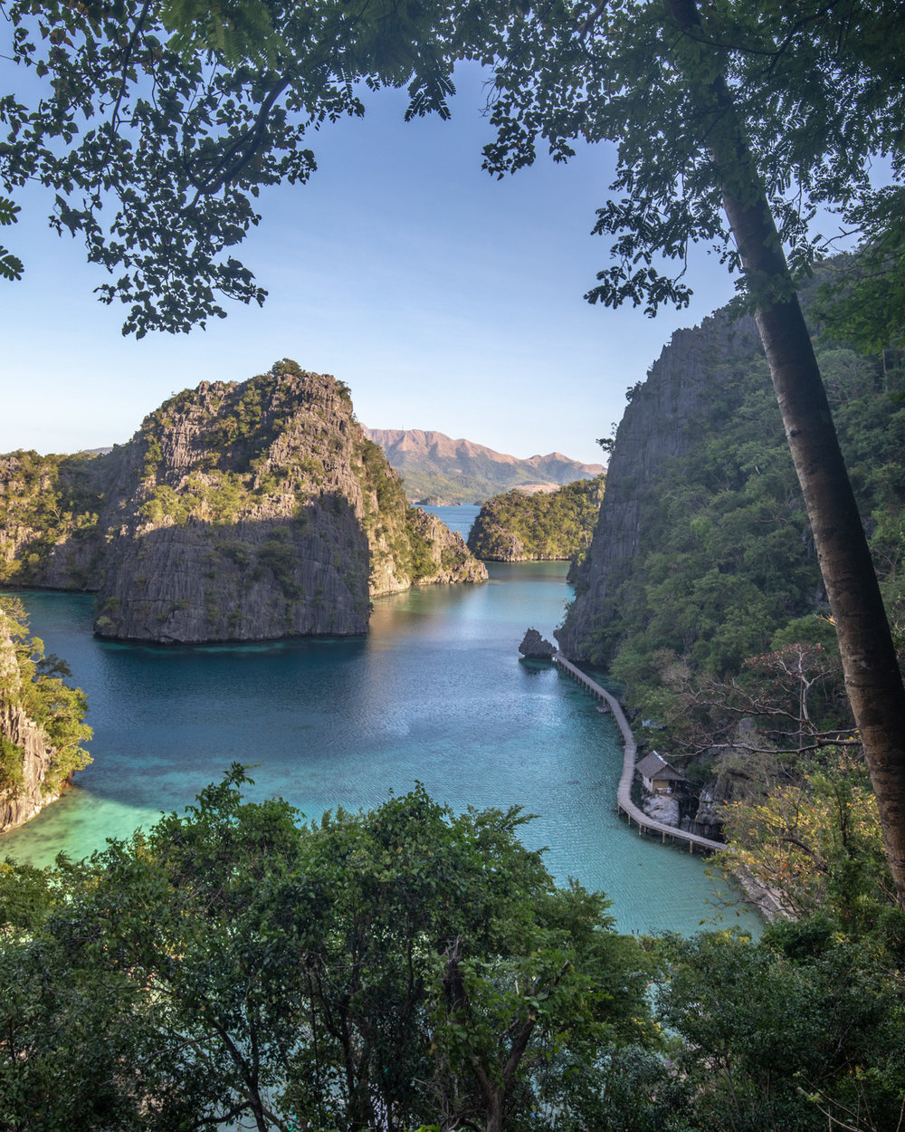 The view from Kayangan Lake, Coron