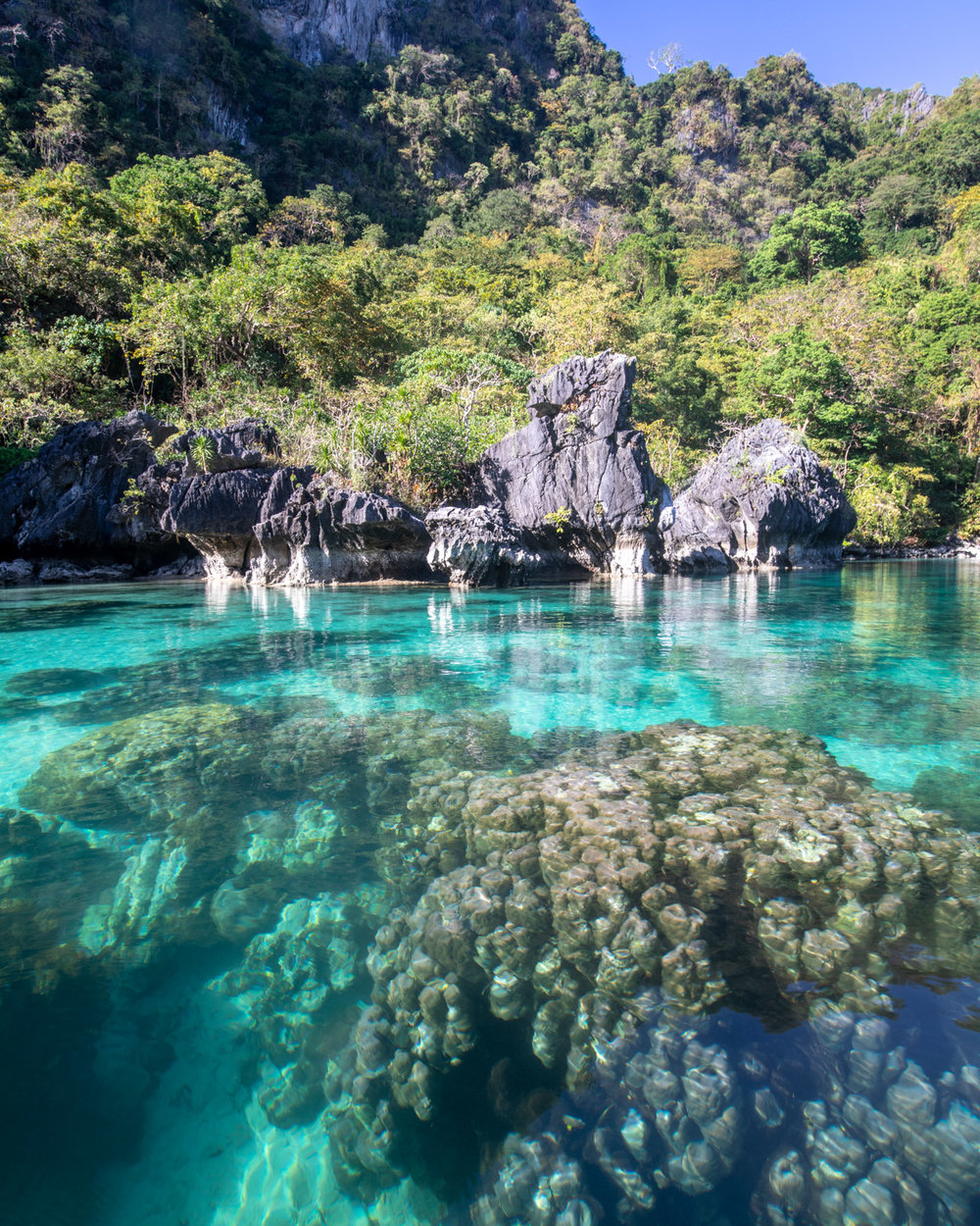 The crystal clear water and coral in the Big Lagoon