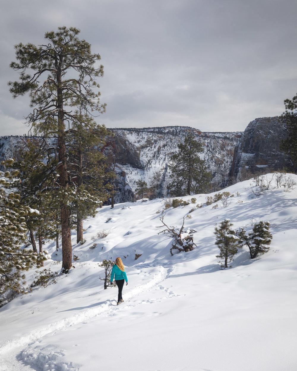 The West Rim Trail - Zion in Winter