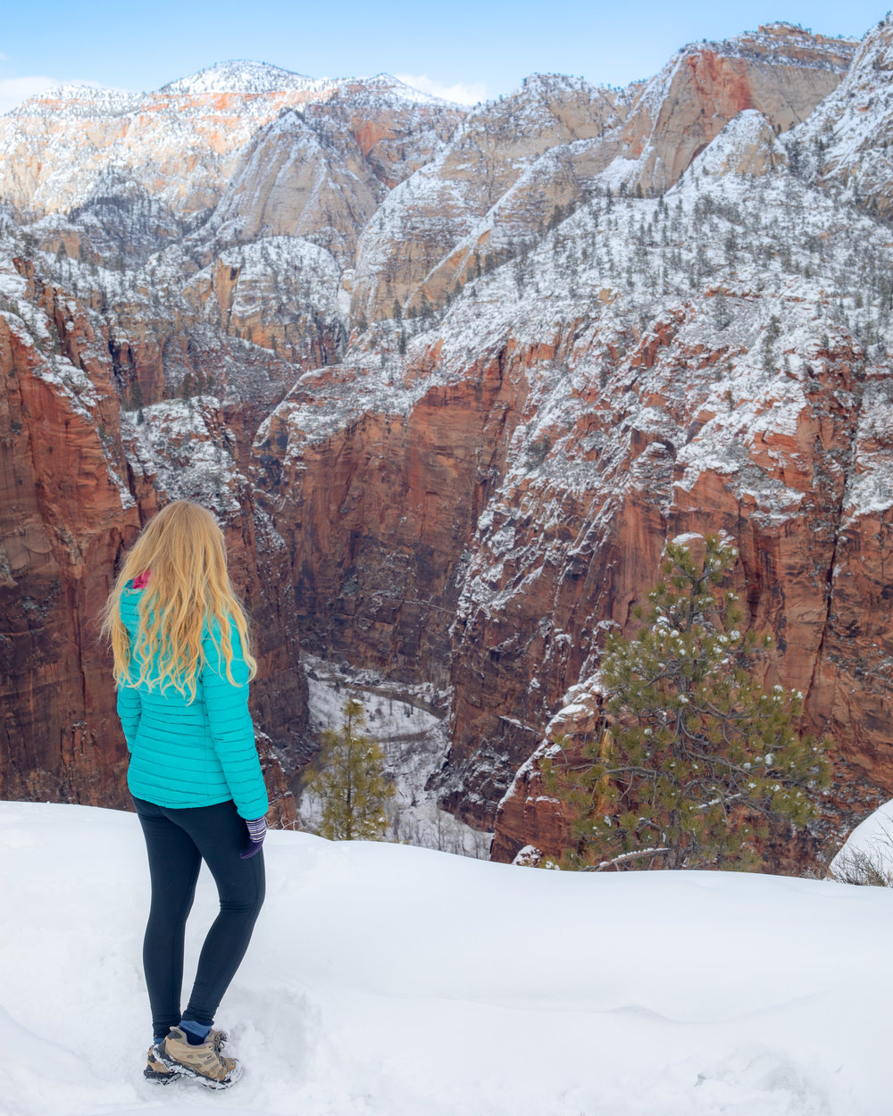 Canyon Views from the West Rim Trail - Zion in Winter