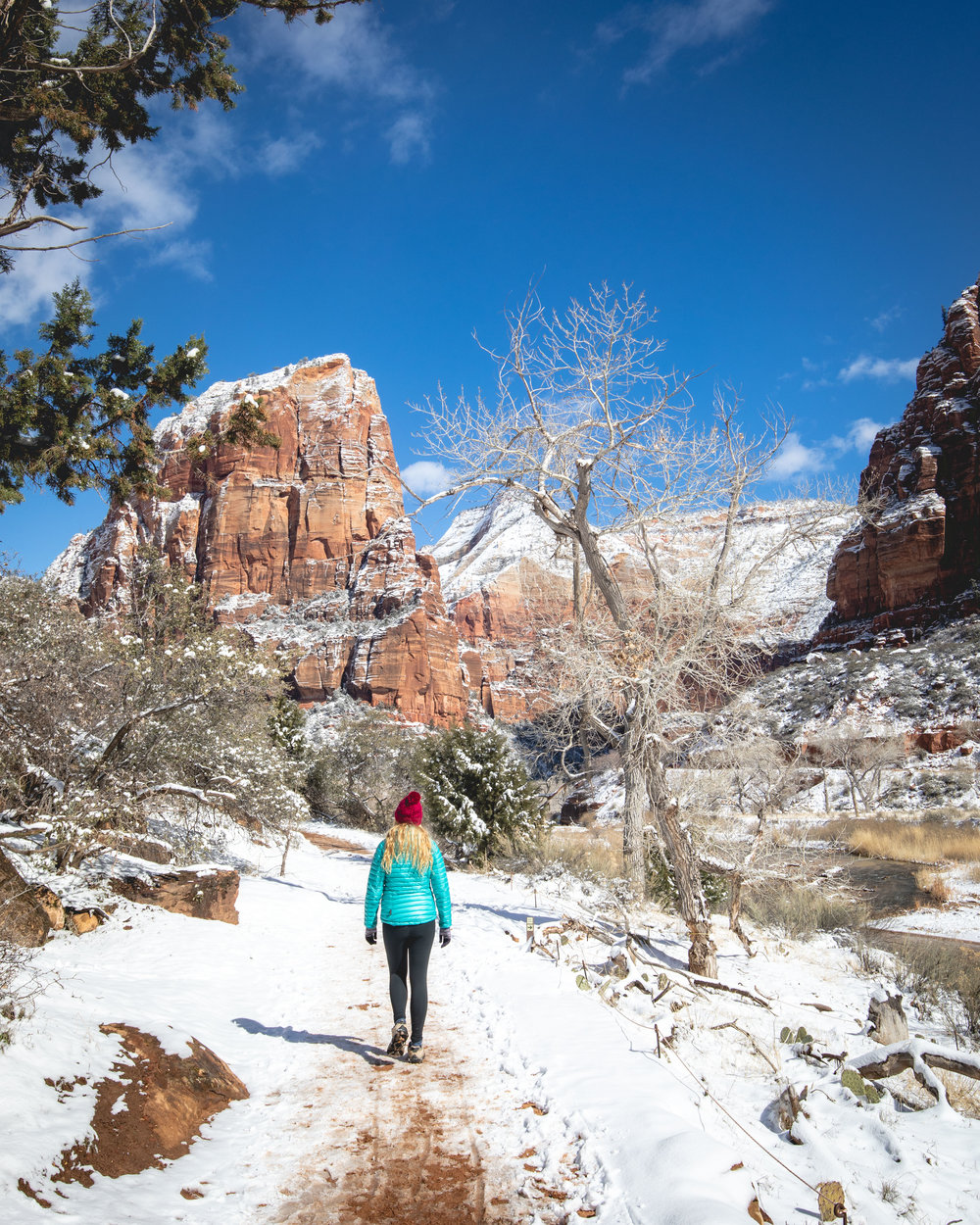 The start of the trail to Angel's Landing
