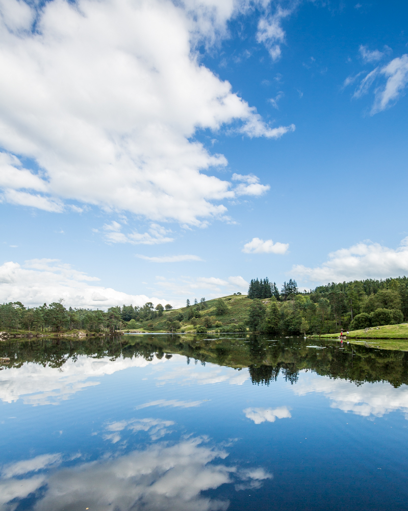 Perfect reflections on Tarn Hows