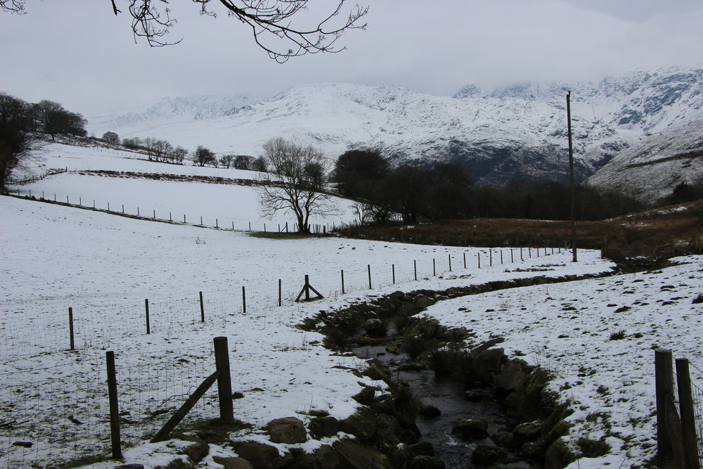 Tal y Llyn in snow