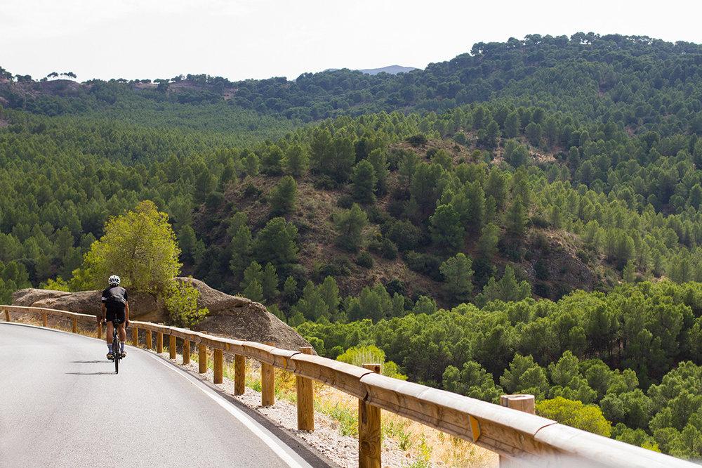 road-bike-rental-hire-malaga.jpg