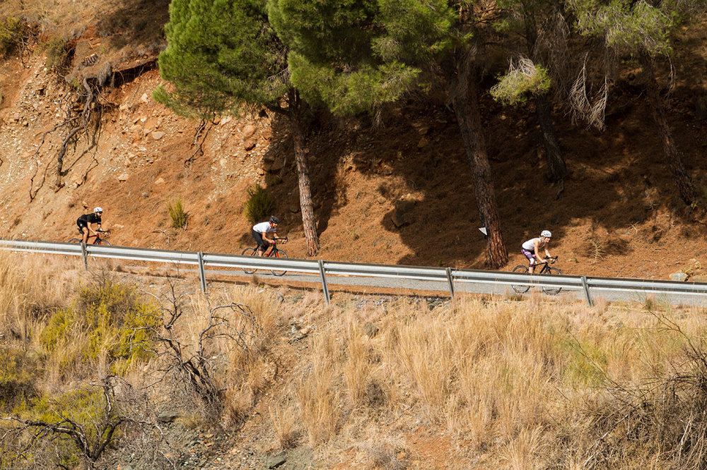 road-bike-hire-malaga-andalusia.jpg