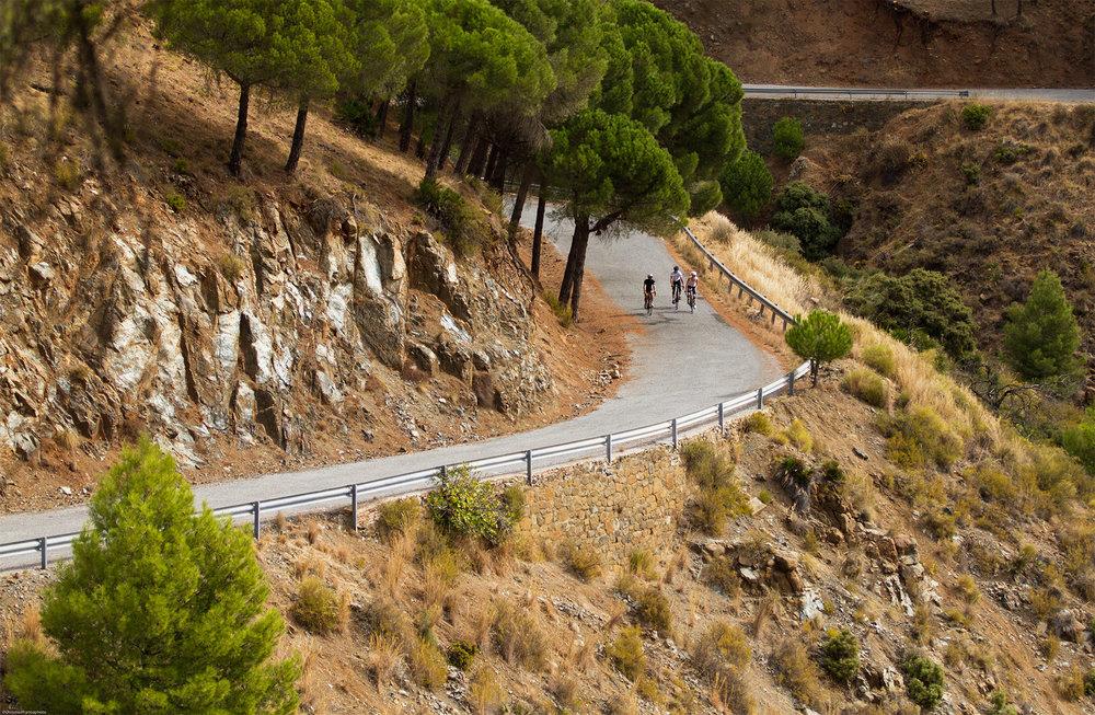 7 reasons to cycle in Malaga