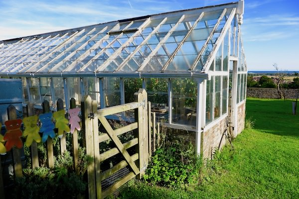 Victorian greenhouses used for Gardening Club and for growing fresh vegetables for school lunches at Sompting Abbotts