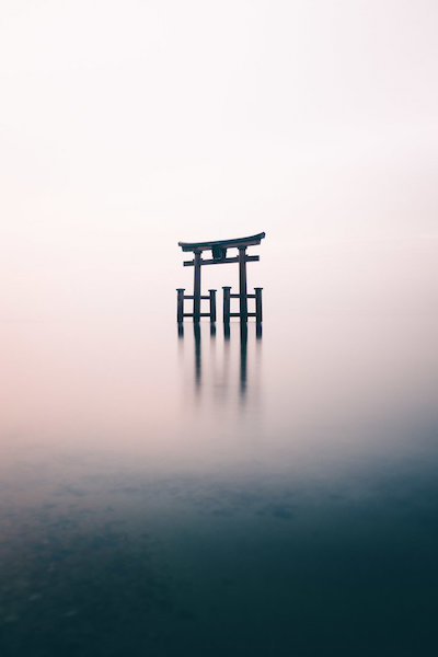 Taro - Travel through the serene wonderlands of Japan with Taro.