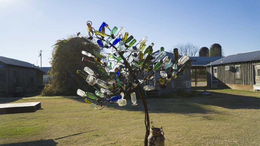 Bottle Tree 2.JPG