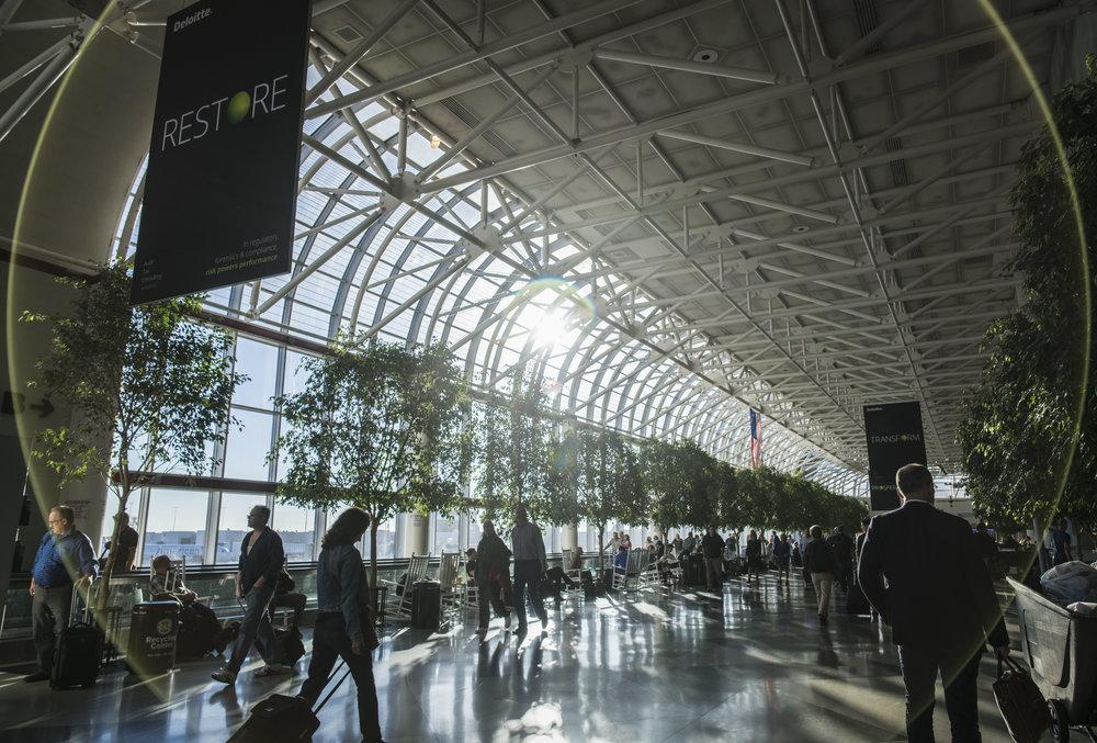 Charlotte Airport 1.JPG
