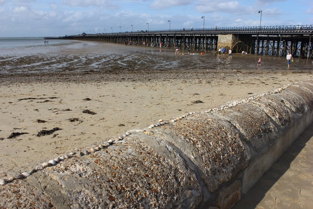 Shell Gallery along the groyne