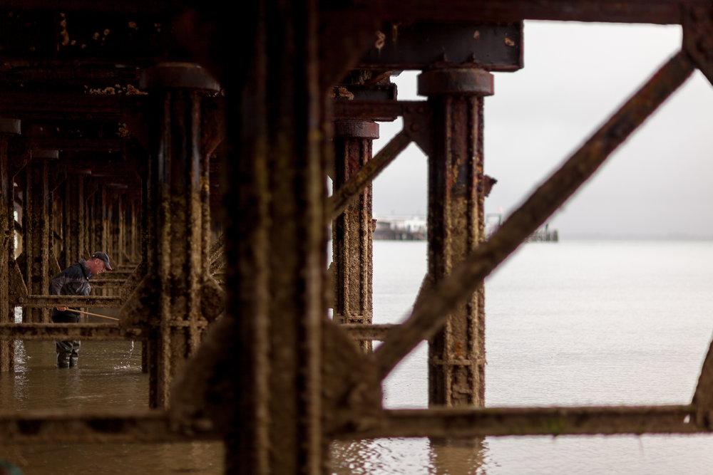 Under The Pier 2016 Image Julian Winslow (9).jpg
