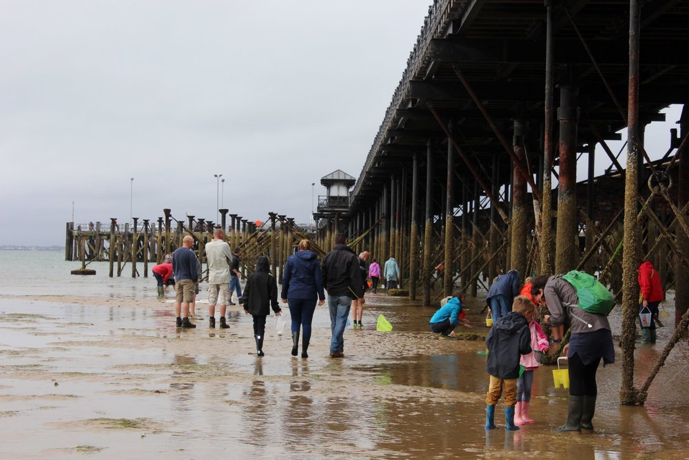 At the end of the Pier at Under the Pier 2016.JPG