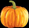 Large_Autumn_Pumpkin_Clipart_PNG_Image.png