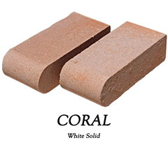 coral (1).png