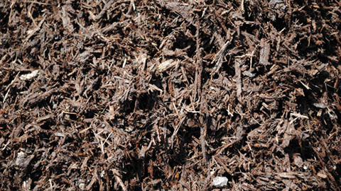 - Brown Mulch