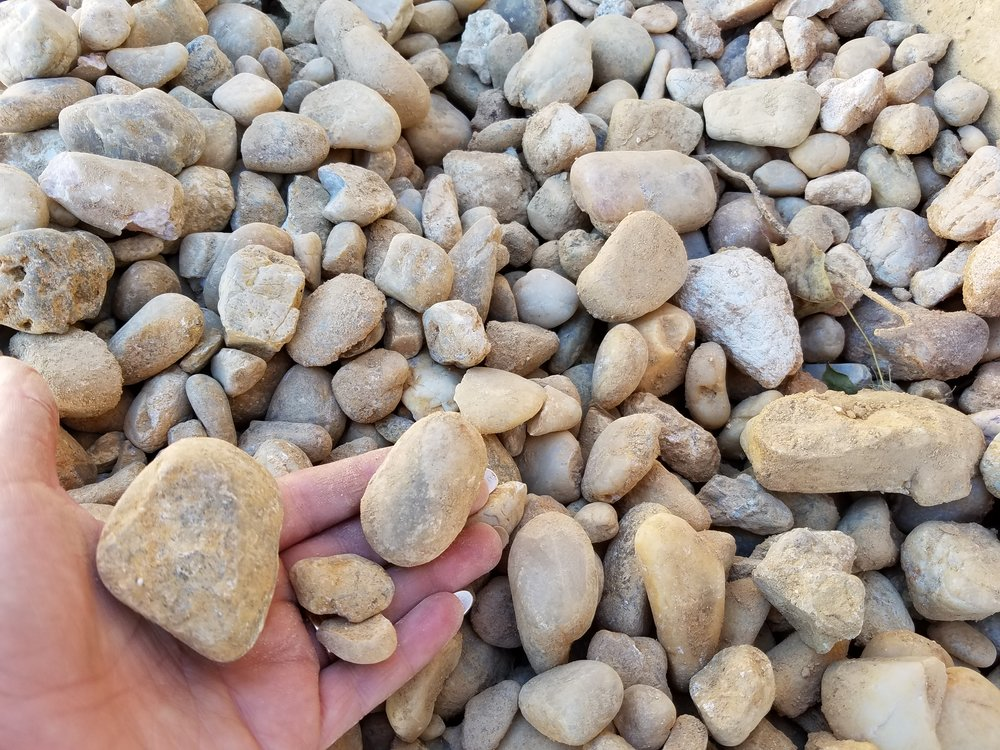 - egg rock