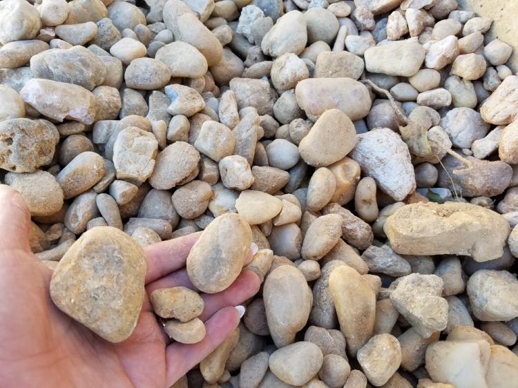 eggrock (2).jpg