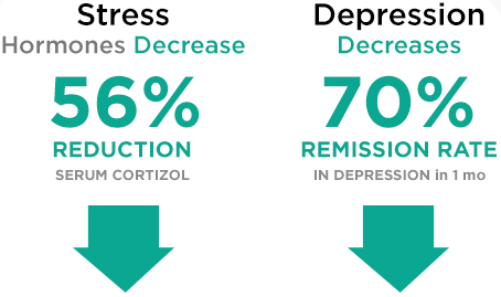 56% reduction in Serum Cortizol (Stress), Depression Decreases