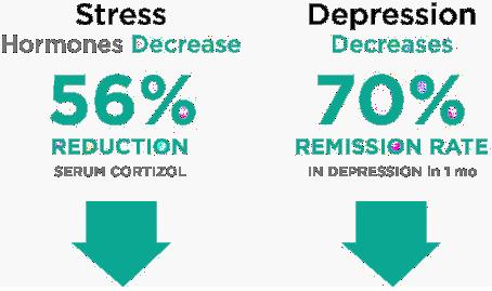 56% reduction in Serum Cortizol (Stress), Depression Decreases
