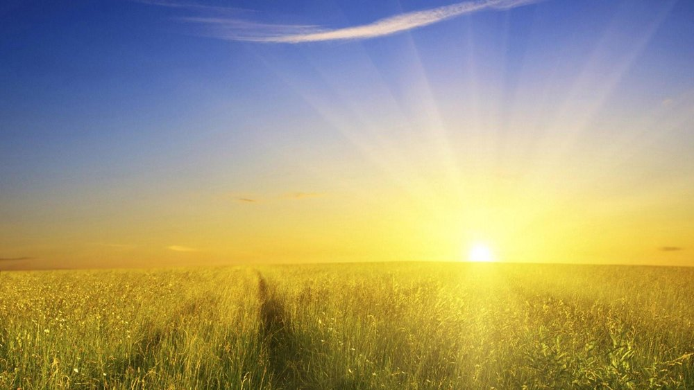 6877028-sunshine-background.jpg