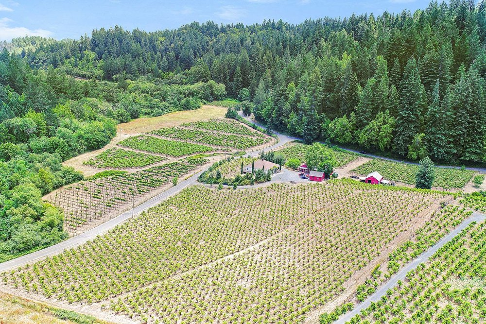 Aerial_07.jpg