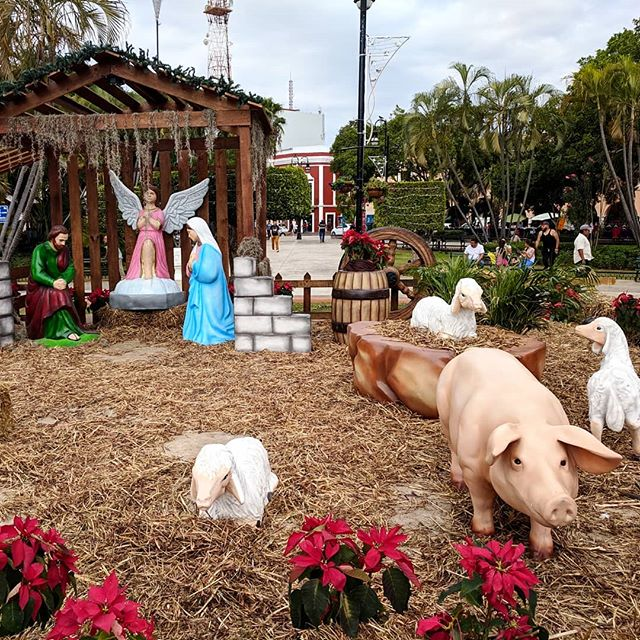 "Something is missing... Or a better title: ""Put the Christ Back in Christmas"" #putthechristbackinchristmas #nativityscene #merida #merrychristmas"