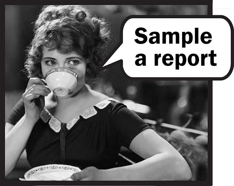 Sample a Report small.jpg