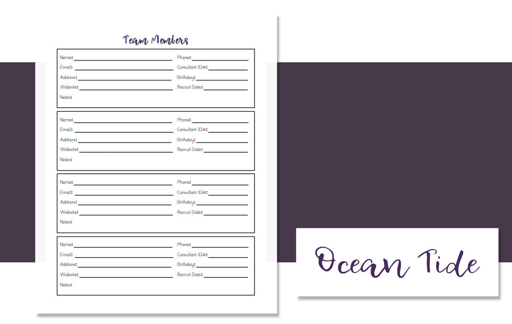 Team Member Design Styles OT.jpg