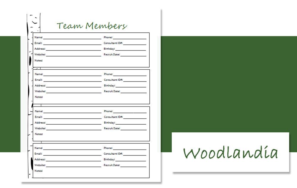 Team Member Design Styles W.jpg