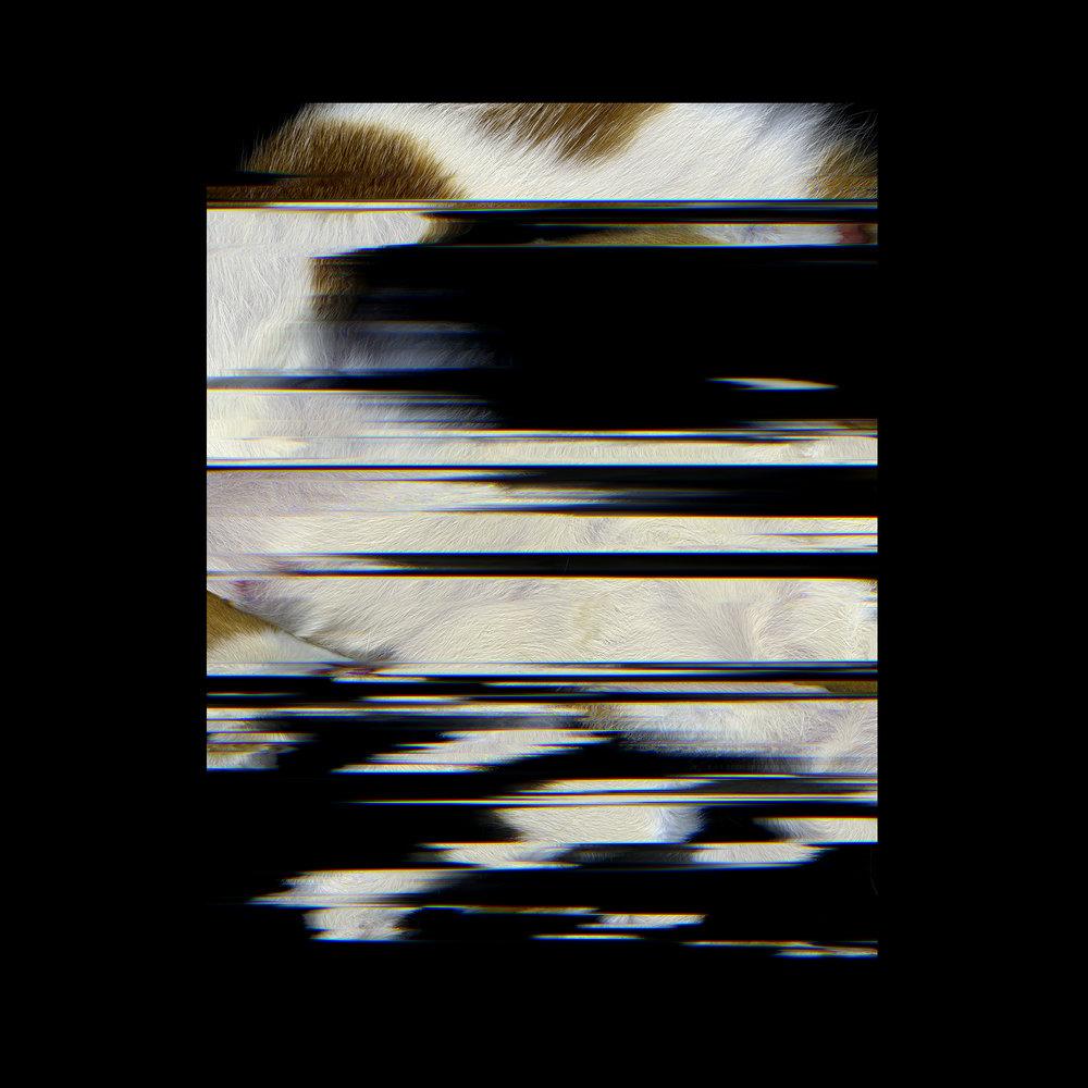 oscar 1.jpg