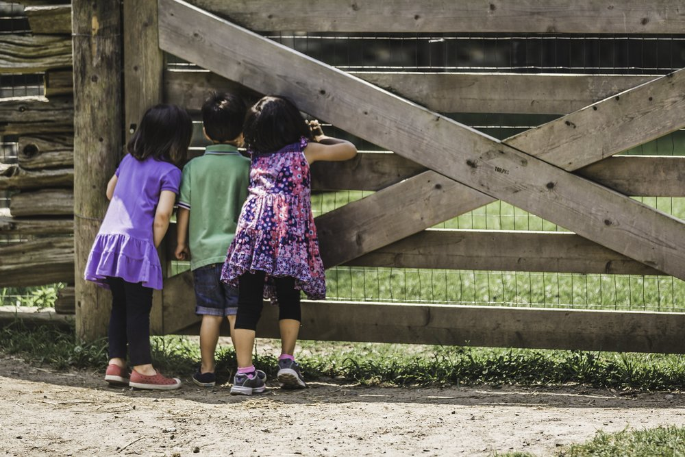 kids-at-the-farm_4460x4460.jpg