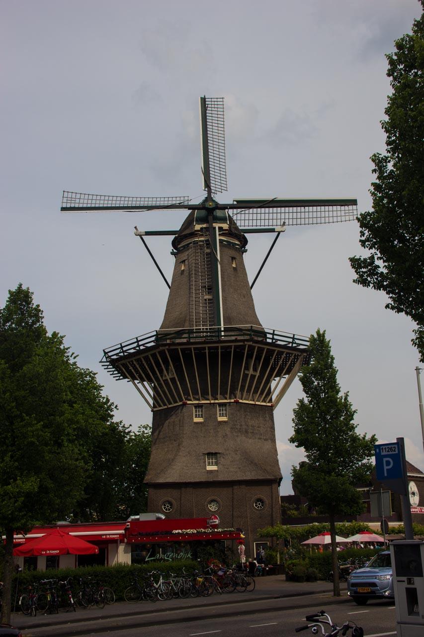 Windmills!
