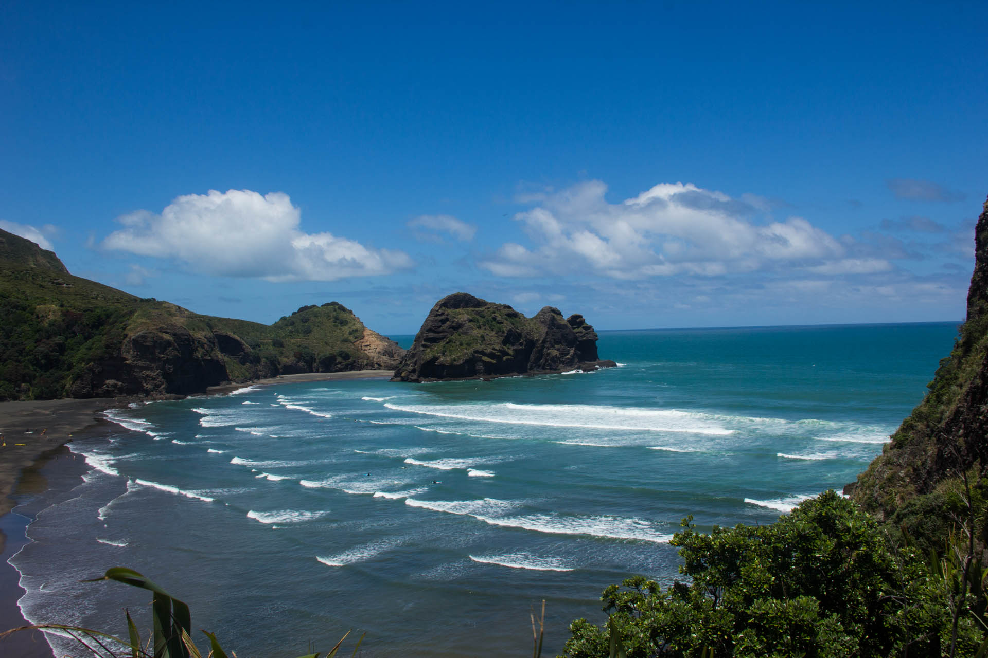piha beach from lion rock new zealand