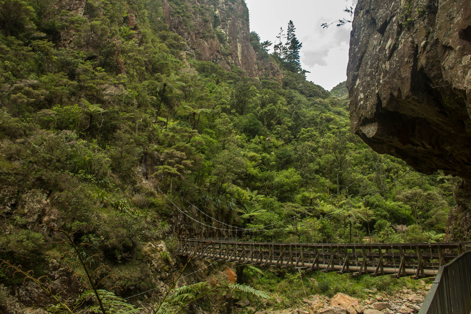 swing bridge at karangahake gorge new zealand travel