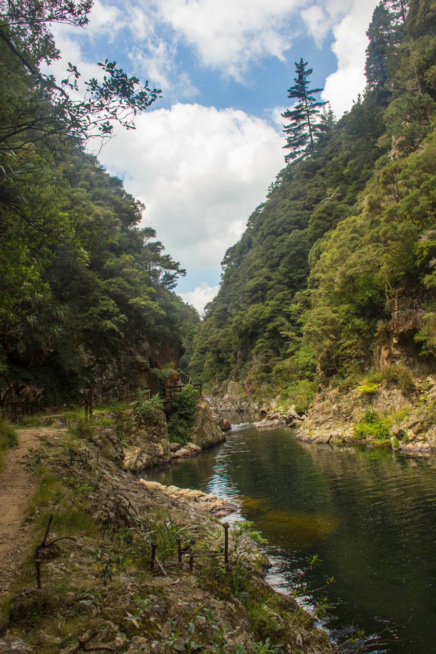 karangahake gorge walk new zealand gold mines river