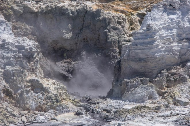 steaming hot pools at rotorua hell's gate new zealand
