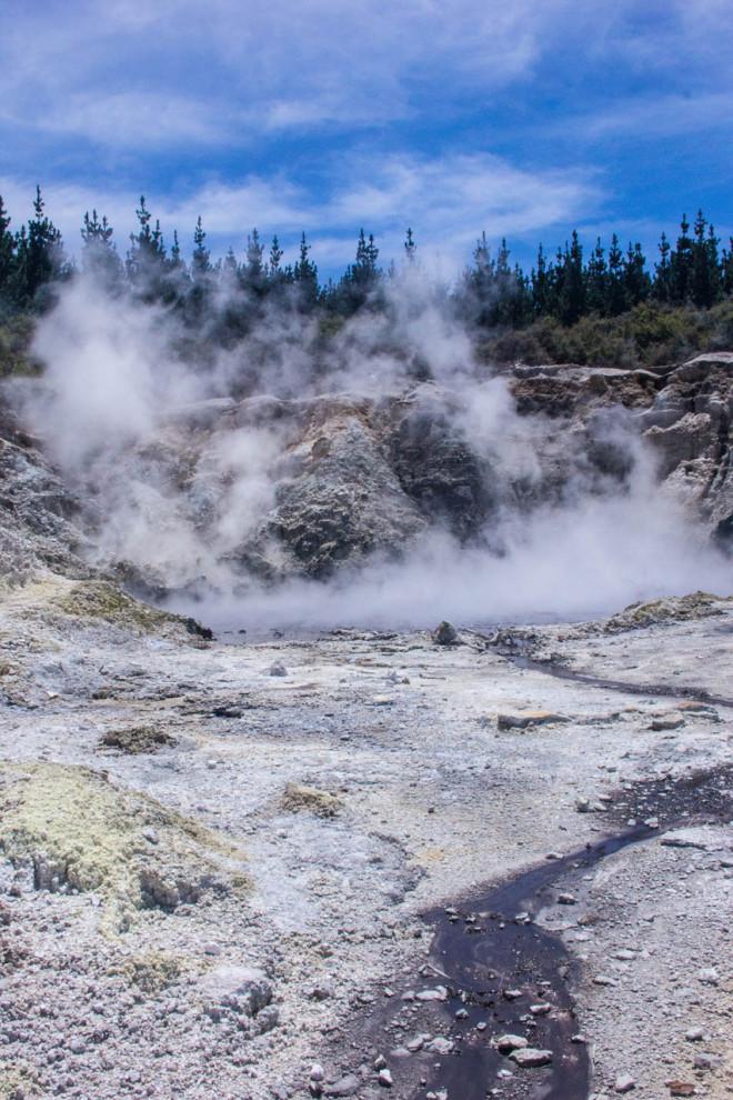 steamy geothermal hot pools rotorua new zealand