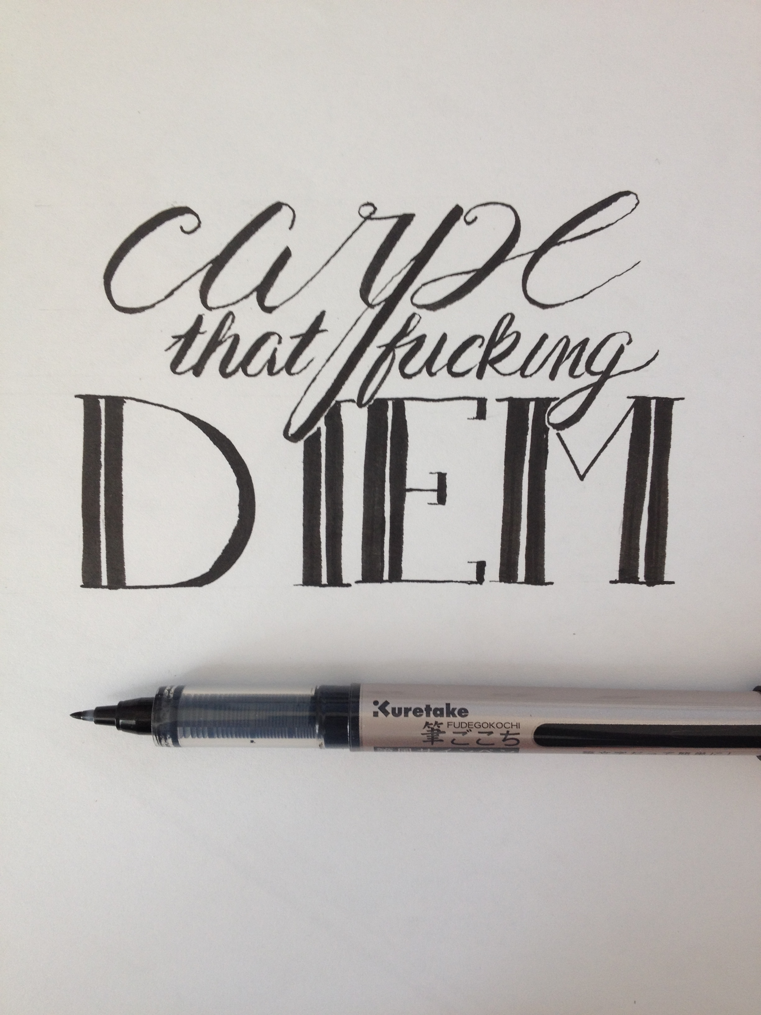 carpe that fucking diem kuretake brush pen quote