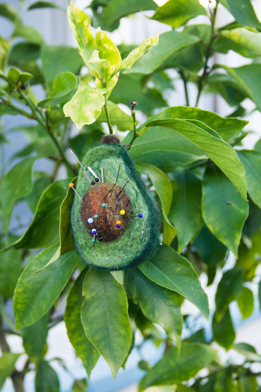 (Hi, yes,  I did hang my pincushion in the lemon tree in our front yard for photos...)
