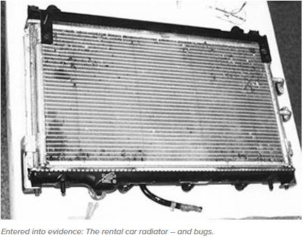 Bugs-radiator.JPG