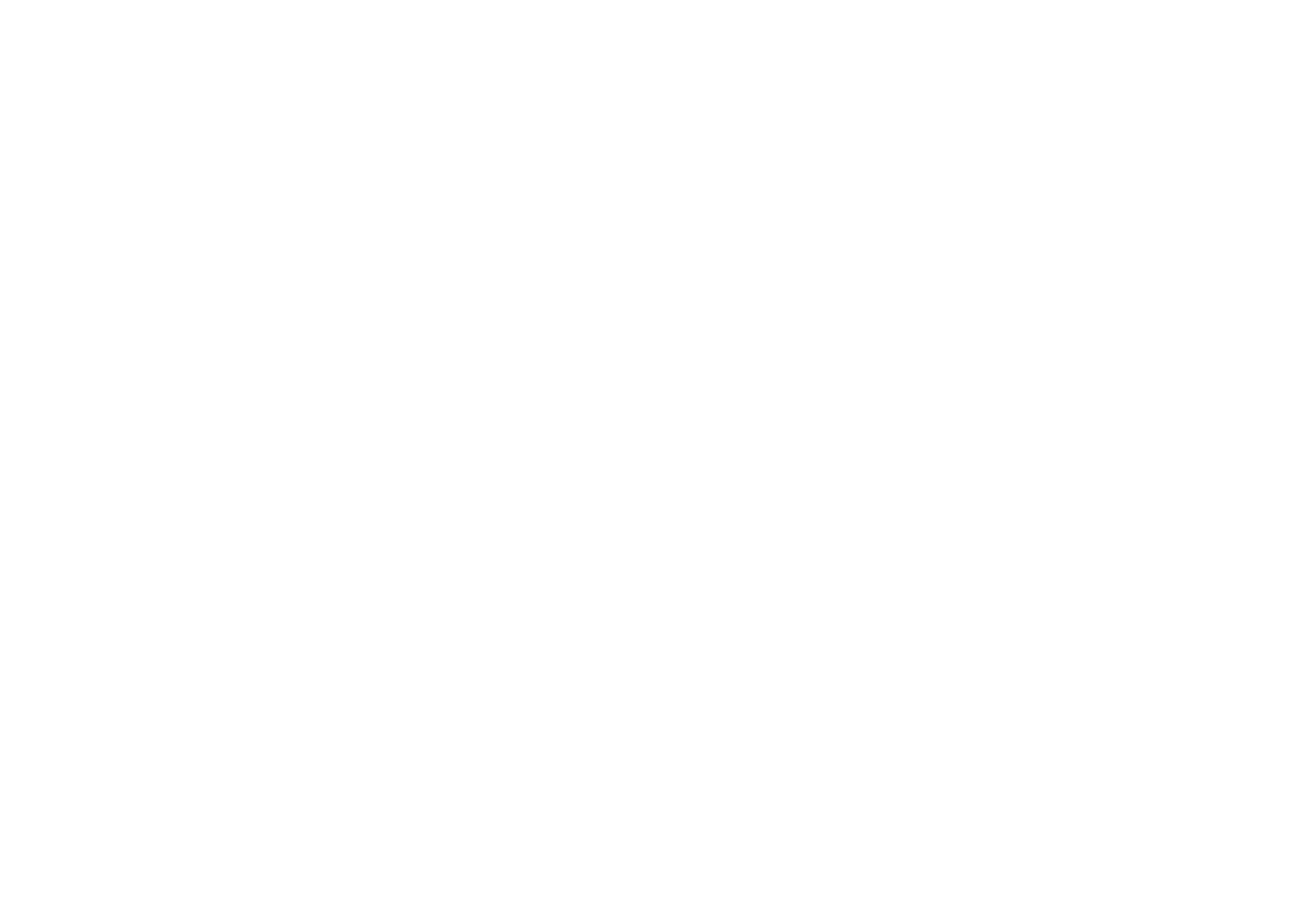Williamsburg Salsa Orchestra
