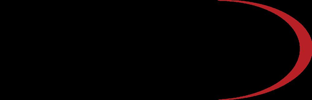 Dyna logo.png