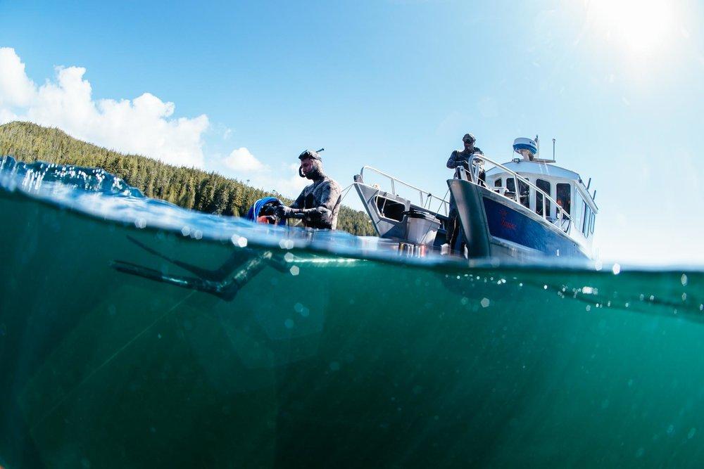On Deck in the Broughton Archipelago with Nimmo Bay Resort. Photo: Jeremy Koreski