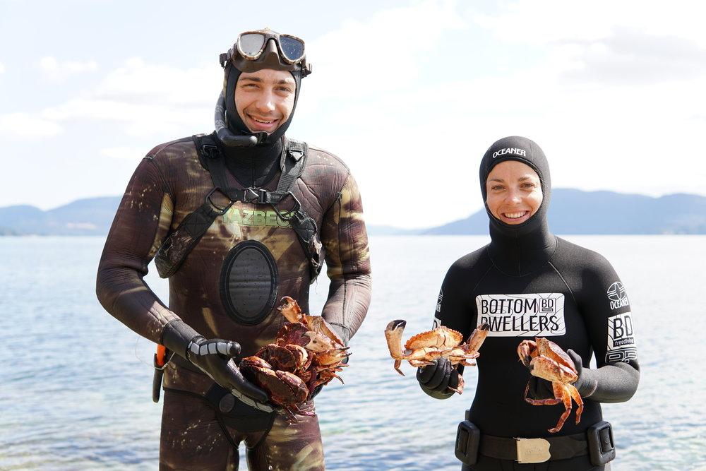 Crab picking Bottom Dwellers Freediving