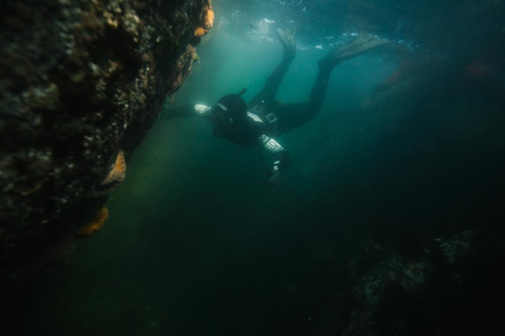 May 3-6 - 945* + GSTIncludes BOTH May 3-5 PFI FREEDIVER &MAY 4-6 FREedive-Harvesting Courses - Tide to Table Package - May 3-6COURSE FULLSIGN UP FOR WAITLIST